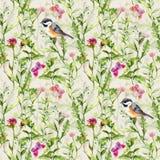 鸟,狂放的草本,草,花,春天蝴蝶 被重复的模式 水彩 免版税库存照片