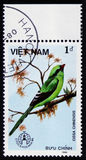 鸟,系列动物,大约1986年 库存图片