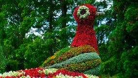 鸟` s火的一个五颜六色的花卉图在Mainau海岛  免版税库存图片