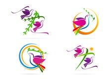 鸠商标,鸽子,与发怒叶子标志,圣灵象构思设计的太阳 免版税库存图片