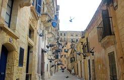 鸠在一条狭窄的地中海街道飞行  免版税库存照片