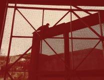 鸠鸟坐休息的窗口 免版税图库摄影
