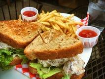 鸡丁沙拉三明治和炸薯条 库存照片