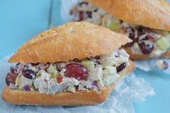 鸡丁沙拉三明治用希腊酸奶 图库摄影