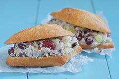 鸡丁沙拉三明治用希腊酸奶 免版税库存照片