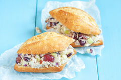 鸡丁沙拉三明治用希腊酸奶 库存图片