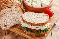 鸡丁沙拉三明治蕃茄沙拉 免版税库存图片