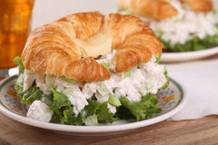 鸡丁沙拉三明治 免版税库存图片