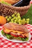 鸡丁沙拉与野餐篮子的长方形宝石三明治 免版税库存照片