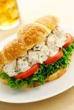 鸡丁沙拉新月形面包三明治 免版税库存图片