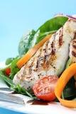 鸡丁沙拉菠菜 库存图片