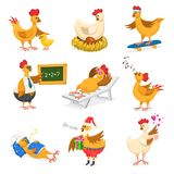 鸡传染媒介动画片小鸡在圣诞老人帽子的字符在Christrmas或情人节党和母鸡有xmas礼物的fo哄骗 库存例证