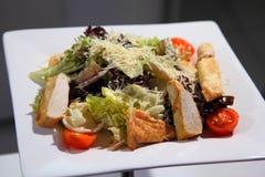 鸡内圆角烤沙拉蔬菜 库存照片