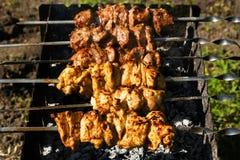 鸡和小牛肉在格栅的kebabs烤肉 库存照片