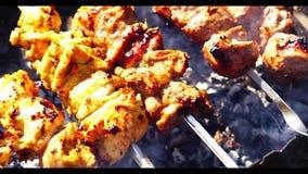 鸡和小牛肉在格栅的kebabs烤肉 影视素材