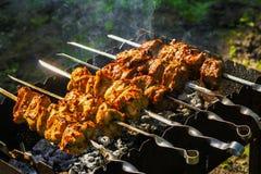 鸡和小牛肉kebabs烤肉 库存图片