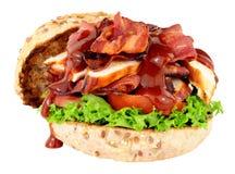 鸡和烟肉三明治卷 图库摄影
