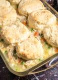 鸡和饺子在平底锅 免版税图库摄影
