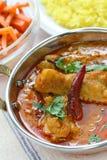 鸡咖喱盘印地安人 库存照片