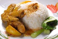 鸡咖喱米 免版税库存图片