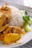 鸡咖喱米 库存照片