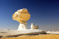 鸡喜欢蘑菇岩石 免版税库存图片