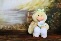 鸡复活节 库存图片