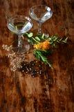 鸡尾酒和botanicals 免版税库存照片