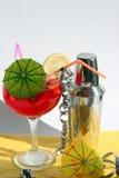 鸡尾酒搅拌器 免版税图库摄影