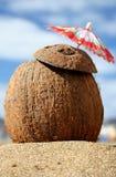 鸡尾酒椰树 库存照片
