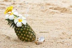 鸡尾酒菠萝 库存图片