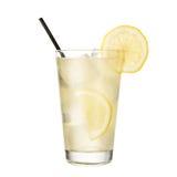 鸡尾酒金汤尼用在白色背景隔绝的柠檬 库存图片