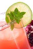 鸡尾酒mojito多数石榴普遍的系列 免版税库存照片