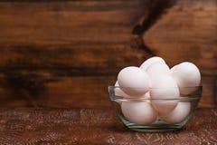 鸡怂恿白色 免版税库存照片