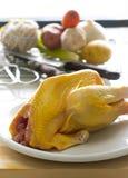 鸡成份炖煮的食物 免版税图库摄影