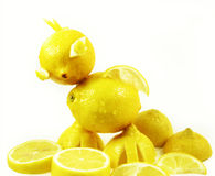 鸡柠檬 免版税库存照片