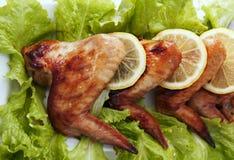 鸡油煎的位于的行翼 免版税图库摄影