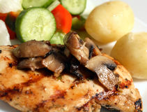 鸡烤蘑菇沙拉 免版税图库摄影