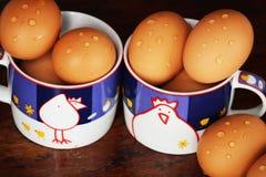 从鸡的鸡蛋 免版税库存照片