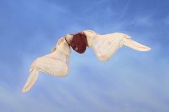 鸡翼和心脏 库存图片