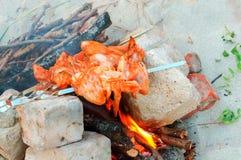 鸡翼在火,鸡的串在火油煎被烹调 免版税库存照片