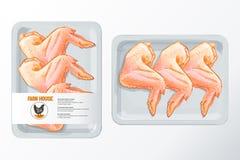 鸡翼多苯乙烯包装的传染媒介 免版税库存照片