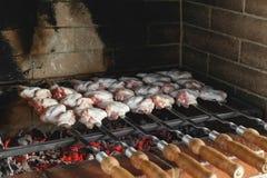 鸡翼,烤在格栅的烤箱在一个晴朗的夏日 免版税库存图片