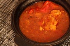 鸡肉沙锅菜用辣椒粉和西红柿酱 图库摄影
