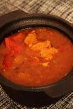 鸡肉沙锅菜用辣椒粉和西红柿酱 库存图片