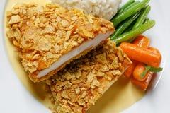鸡肉菜肴 免版税图库摄影