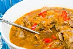 鸡胗炖煮的食物 免版税库存图片