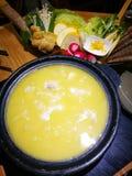 鸡胶原汤料热的罐 库存照片