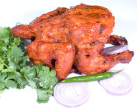 鸡膳食tandoori 库存照片