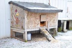 鸡舍热化点燃新鲜的农场下的鸡蛋 免版税库存照片